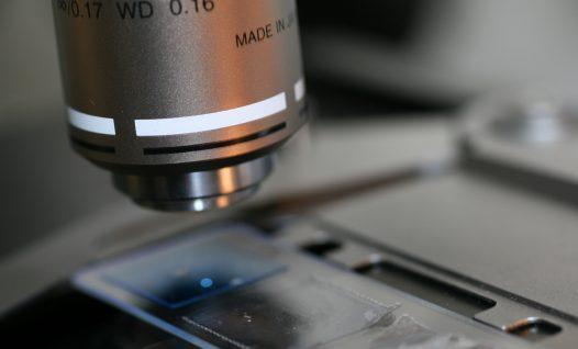 Mikroskopeerimine
